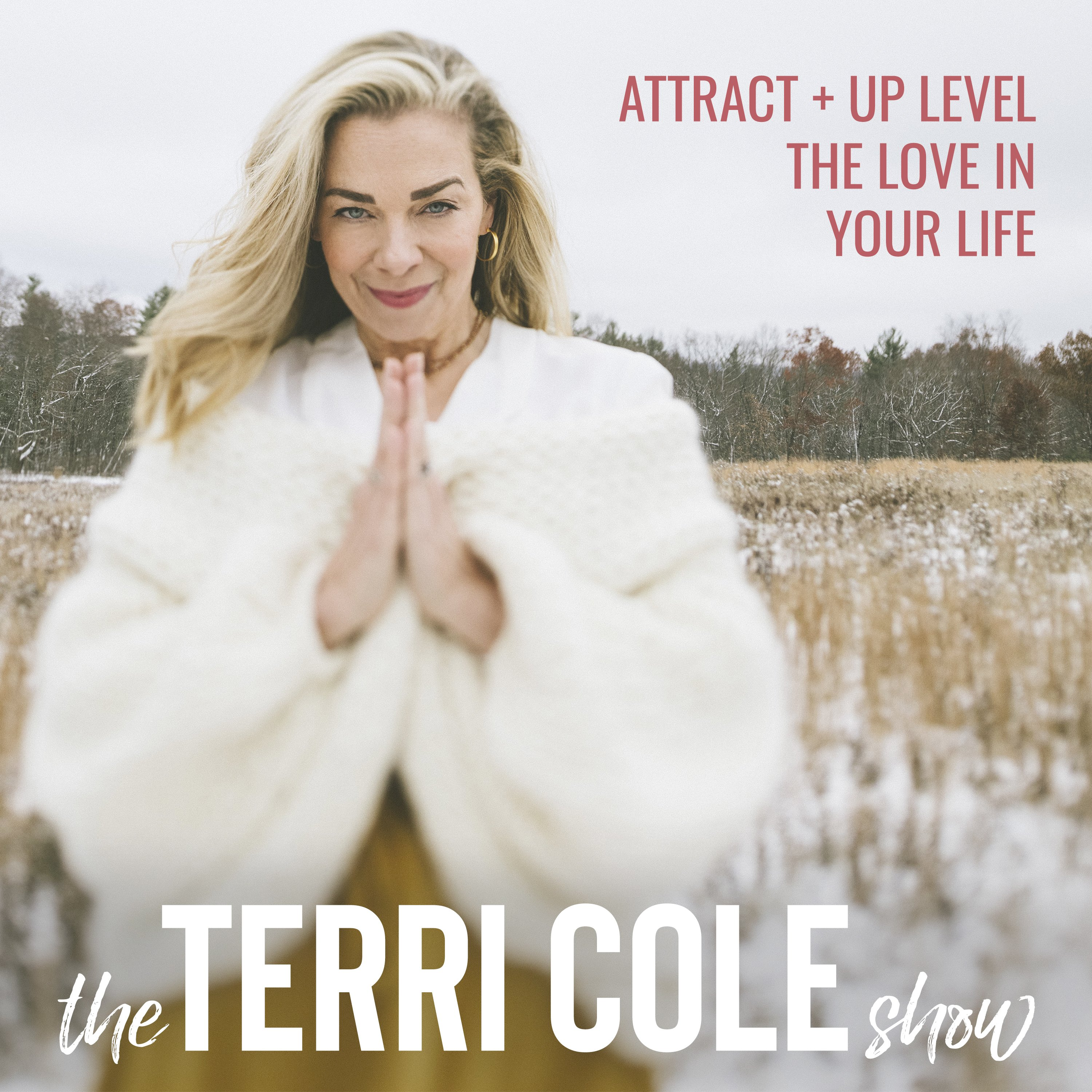 Attract + Up Level the LOVE in Your Life on The Terri Cole Show