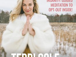 Black Friday Insanity- Guided Gratitude Meditation to Opt-Out Inside! - The Terri Cole Show