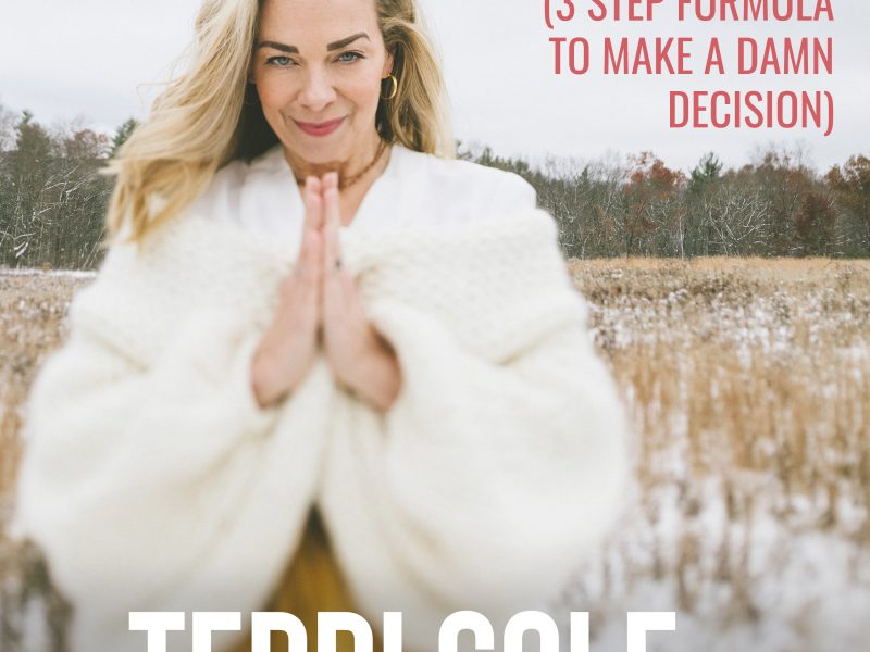 Get Off The Fence! (3 Step Formula to Make a Damn Decision) on The Terri Cole Show
