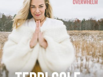 Overcome Overwhelm on The Terri Cole Show